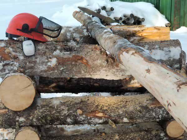 Chainsaw Course Alberta